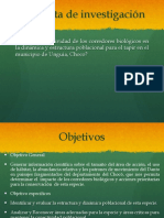 danto-proyecto- metodos.pptx