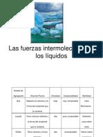 Liquidos 2009-1