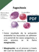 FAGOCITOSIS