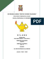 Silabo Anatomia Humana II-2017-2 Universidad Andina