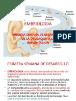 Tema 15 EMBRIOLOGIA 1.pptx