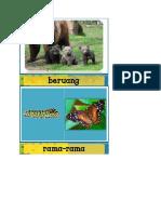 Haiwan Serupa Dan Tidak Serupa Induknya