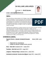 Lara Ariza Luis Jonatan - Cv