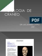Pa Radiologia Del Craneo