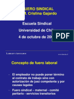clase-fuero-sindical-20071.ppt