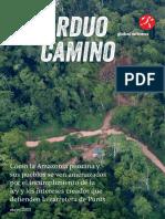 unarduocamino_globalwitness_lo (2).pdf