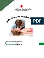 Manual de Primeros Auxilios Cdi
