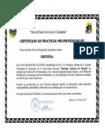 Experiencia laboral.PDF.pdf