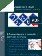 Discapacidad  Visual.pptx