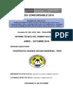 15. Estructura_informe Tecnico Del PC