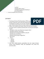 Soal Essay p3k