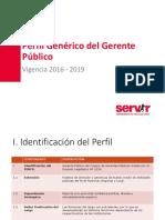 CGP Perfil Gerente Publico
