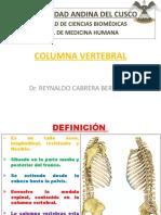 2. COLUMNA VERTEBRAL.pptx