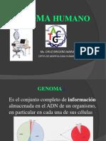 GENOMA HUMANO I.pptx
