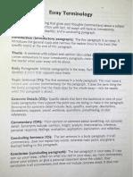 Home 45 Essay Terminology Outline