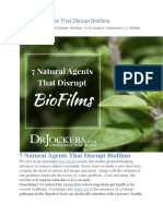 7 Natural Agents That Disrupt Biofilms