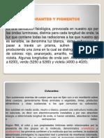 COLORANTES Y PIGMENTOS.pptx