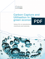 CCU in the green economy report.pdf