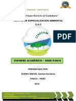 CENESAM INFORME ACADEMICO.docx