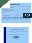 Presentación Pert -Pcm