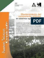 Avt0440 Mantenimiento Arboles SAFCafe
