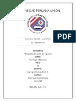 Informe Concreto Dayan