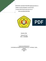 Proposal KKP Budidaya Seledri