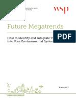 IEMA Environmental Megatrends 2017