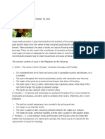 How to Grow Cacao Tree.docx