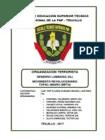 Monografía Organización Terrorista