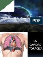 Cavidades Toracicas Pleura y Pulmones