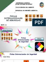 Ficha Internacional de Seguridad