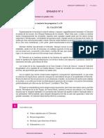 ensayo 01.pdf