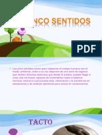sentidos-130804172459-phpapp01