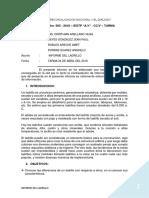 Informe Del Ladrillo