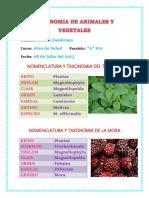 Taxonomía Animales y Plantas