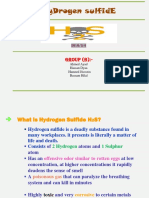 h2s-powerpoint-standard-rev1.pdf