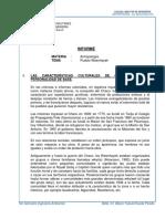Informe Antropologia Pueblo Wenawk