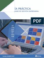 Guia Practica Software de Gestion Empresarial