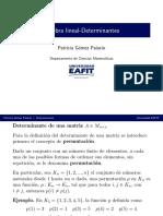 3_determinantes.pdf