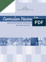 CNB_de_Formacion_Docente[1].pdf