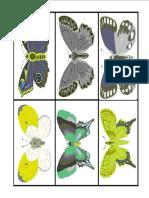 butterfleyMatch3.pdf