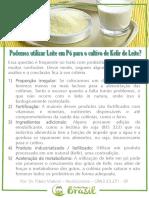 Kefir-e-Leite-em-P-PBrasil.pdf