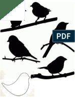 Aves Molde
