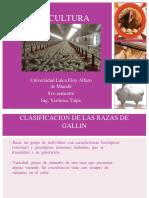2razasaves-160610211447 (1).docx