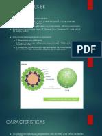 Poliomavirus Bk