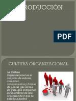 Cultura Organizacional (1)Rrhh