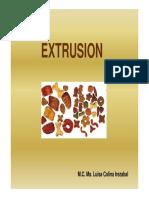 extrusion de alimentos.pdf