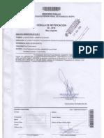 CASO No. 2016-87, EXP.00145-2017-41-1291-JR-PE-04 Disposicion 31