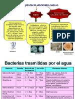 Características Microbiologicas Agua